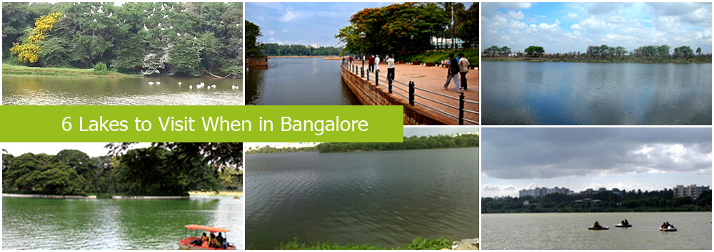 6 Lakes to Visit in Bangalore