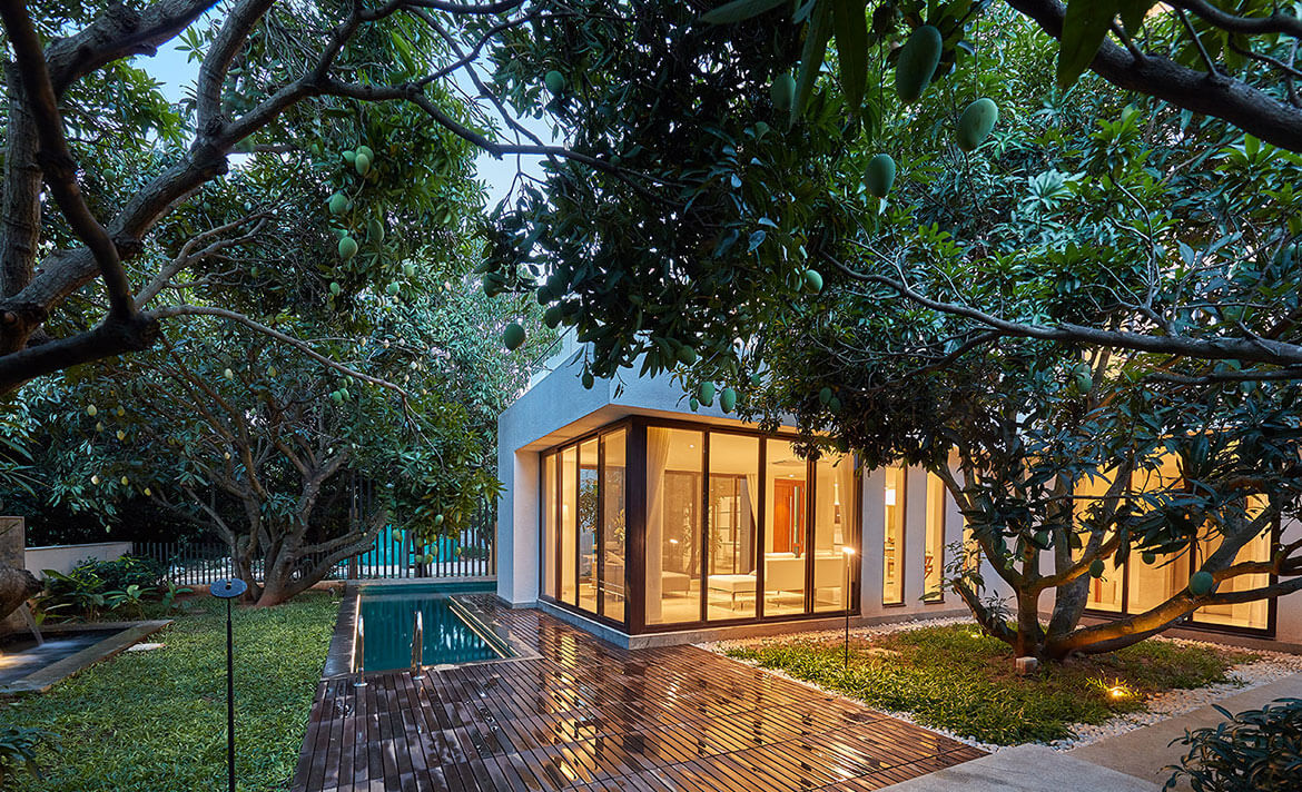 The Importance of Biophilic Homes - Fortius Infra